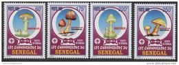 Sénégal 1999 Champignons Pilze Mushrooms Mi. 1797 - 1800 4 Val. RARE MNH - Senegal (1960-...)