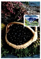 Carte Maximum 2009 - Flore Des Régions. La Flore Du Sud. La Myrtille (Rhône Alpes). - Maximum Cards