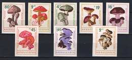 Mushrooms Topical Stamps - 1961. Bulgaria Nice IMPERF Set MNH (**) Michel: 15 EUR - Bulgaria