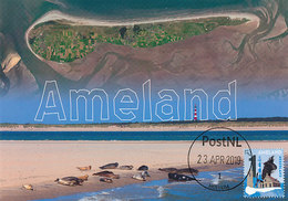 D38753 CARTE MAXIMUM CARD RR FD 2019 NETHERLANDS - ISLAND OF AMELAND CONTOURS BIRD'S EYE VIEW CP ORIGINAL - Aardrijkskunde