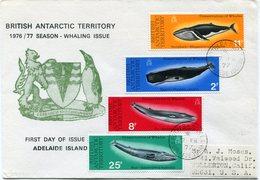 B. A. T. LETTRE DEPART ADELAIDE ISLAND 7 FE 77 POUR LES ETATS-UNIS - Territoire Antarctique Britannique  (BAT)
