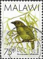 MALAWI 1988 Birds -  75t - Green Barbet FU - Malawi (1964-...)