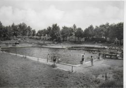 AK 0412  Schöneck ( Vogtland ) - Schwimmbad / Ostalgie , DDR Um 1968 - Plauen
