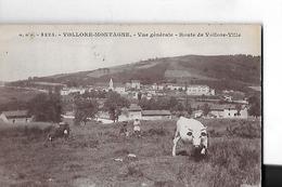 VOLLORE MONTAGNE  N 5223  VUE GENERALE  RTE VOLLORE VILLE  VACHE  ENFANTS    DEPT 63 - Other Municipalities