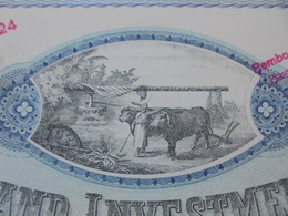 EGYPTE - ALEXANDRIE 1905 - THE EGYPTIAN LAND INVESTMENT - ACTION DE 5 LIVRES - BELLE VIGNETTE - TITRE GRAND FORMAT - Shareholdings