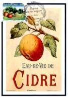 Carte Maximum 2009 - Flore Des Régions. La Flore Du Nord. La Pomme (Basse Normandie). - Maximum Cards