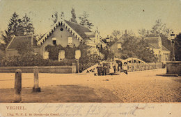 Netherlands PPC Veghel Markt Uitg. W. P. J. De Goede-de Greeff. VEGRE 1900 (2 Scans) - Veghel