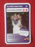 SPAIN CROMO COLLECTIBLE CARD COLECCIÓN SUPER ANIMALS CONDIS ZOO BARCELONA ÀLIGA MENJAMONES ÁGUILA EAGLE AIGLE VER FOTOS - Old Paper