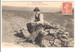 TYPE LOZERIEN - En Route Pour La Moisson - Francia