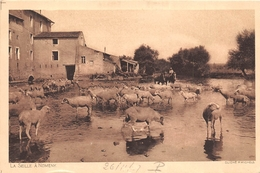 ¤¤  -    NOMENY    -   La Seille   -  Moutons , Berger    -   ¤¤ - Nomeny