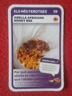 SPAIN CROMO COLLECTIBLE CARD COLECCIÓN SUPER ANIMALS CONDIS ZOO BARCELONA ABEJA ABELLA AFRICANA HONEY BEE ABEILLE VER... - Sin Clasificación