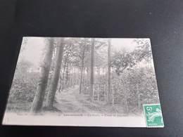 CPA (78) Louveciennes.En Forêt.   Etude De Paysages.   (H3230) - Louveciennes