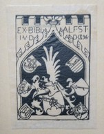 Ex-libris Illustré XIXème - ALFRED STÜCKELBERG - Ex-libris
