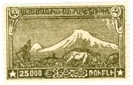 ARMENIA, MONTE ARARAT, 1921, 25000 R., FRANCOBOLLO NUOVO (MLH*)  Mi:AM IIsA, Scott:AM 294, Yt:AM 118 - Armenia
