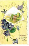 Carte Fantaisie Souvenir De DUCEY Manche 50 / Moulin, Violettes / Militaria / 52 SAINT DIZIER - Souvenir De...