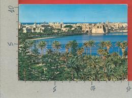 CARTOLINA VG LIBIA - TRIPOLI - Panorama - General View - 10 X 15 - 1966 - Libyen