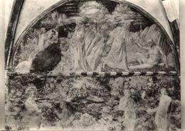 Firenze - Cartolina Antica LA CREAZIONE DELL'UOMO E DEGLI ANIMALI (Paolo Uccello), Chiostro S. M. Novella - OTTIMA R23 - Religione & Esoterismo