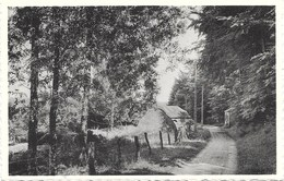Thiaumont NA3: Chemin De La Fontaine - Attert