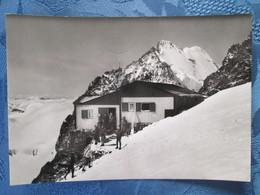 Valmalenco. Gruppo Bernina . Capanna - Sondrio