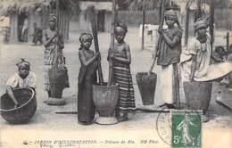 75 - PARIS ( Parcs Et Jardins ) Le JARDIN  D'ACCLIMATATION : Pileuse De Riz - Groupe De Jeunes Filles - CPA 1912 - Seine - Parcs, Jardins