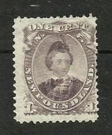Terre-neuve N° 20 Cote 70 Euros - Newfoundland