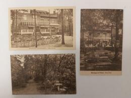 EDEN PARK , Montigny-Le-Tilleul, Lot De 3 Cartes Postales, 4 Photos Et Divers Menus, Tarifs (années 30) - Montigny-le-Tilleul