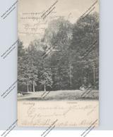 0-3705 ILSENBURG, Ilsenstein, 1907 - Ilsenburg