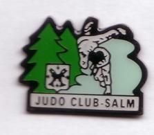 C68 Pin's JUDO CLUB SENONES VOSGES La Principauté De Salm-Salm SAPIN Achat Immédiat - Judo