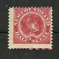 Terre-neuve N°39 Cote 12 Euros - 1865-1902