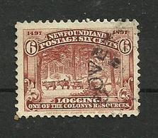 Terre-neuve N°53 Cote 5 Euros - Newfoundland