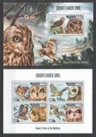 ML601 2013 MALDIVES FAUNA BIRDS SHORT-EARED OWL 1KB+1BL MNH - Uilen