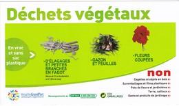 Autocollant - Déchets Végétaux - Versailles - Stickers