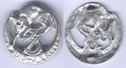 Insigne Du 3e Régiment De Zouaves - Armée De Terre