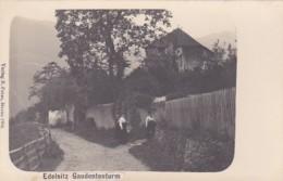 4811134Edelsitz, Gaudententurm. (Verlag B. Peter, Meran 1904.) - Italie
