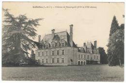 Cellettes Château De Beauregard - France