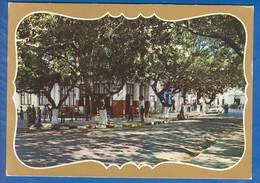 Algerien; Dellys; Rue Ramdani - Algerien