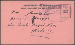 1943 POW CAMP 313 MEF Ovale Su Cartolina Franchigia Da Prigioniero Guerra Italiano In Egitto - 1900-44 Vittorio Emanuele III
