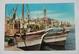 TRAPANI - Porto Con Pescherecci - 1958 - Trapani
