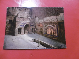 Ercolano - Casa Del Mosaico Di Nettuno E Anfitride - Ercolano