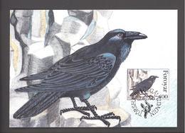 Carte Maximum Oiseaux - FDC  -  Iles Féroé  - Corvus Corax (Corbeau)  - Timbre N°FO 283 - Féroé (Iles)
