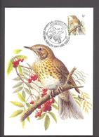 Carte Maximum - FDC - Oiseaux De Buzin - Grive Musicienne - Timbres N° 2426 - 1985-.. Pájaros (Buzin)