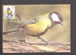 Carte Maximum - FDC - Oiseaux De Buzin - Mésange Charbonnière  - Timbre N° 2460 - 1985-.. Vögel (Buzin)
