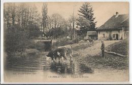CPA - 39 -Jura - Chamblay - Un Coin De Rivière - Vache  -  Cow - France