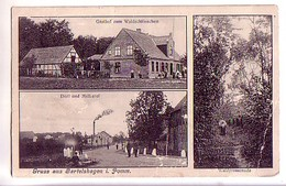 AK Bartelshagen   Gasthof, Dorf And Molkerei, Waldpromenade - Deutschland