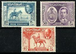 Irak Nº 177/79 Charnela. - Irak