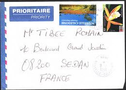 NOUVELLE CALEDONIE Lettre  De NOUMEA De 1996 YT 75 Et PA 300 - Nuova Caledonia