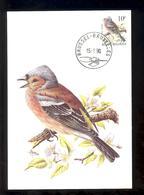 Carte Maximum - FDC - Oiseaux De Buzin -  Pinson Des Arbres - Timbre N° 2351 - 1985-.. Oiseaux (Buzin)