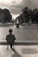 Apaisante Photo Originale Homme De Dos Au Bassin Du Parc Regardant Naviguer Les Bateaux Des Enfants Vers 1950 - Places