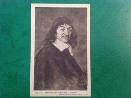 Descartes Par Frans Hais, Louvre - Historia