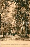 13557494 Divonne-les-Bains Allée De L'Espérance Parc De L'Etablissement Divonne- - Divonne Les Bains